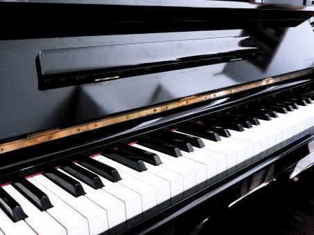 ピアノで音楽のサポートをします ドレミ振ります!ピアノ弾きます!