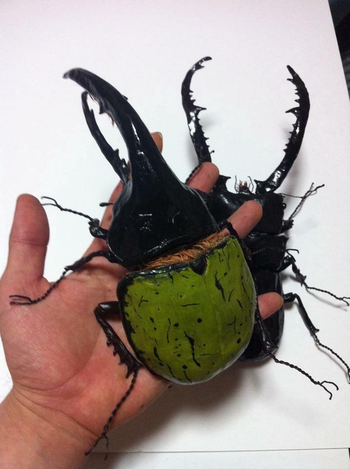 リアル昆虫作ります まるでホンモノ!メディアに取り上げられました。