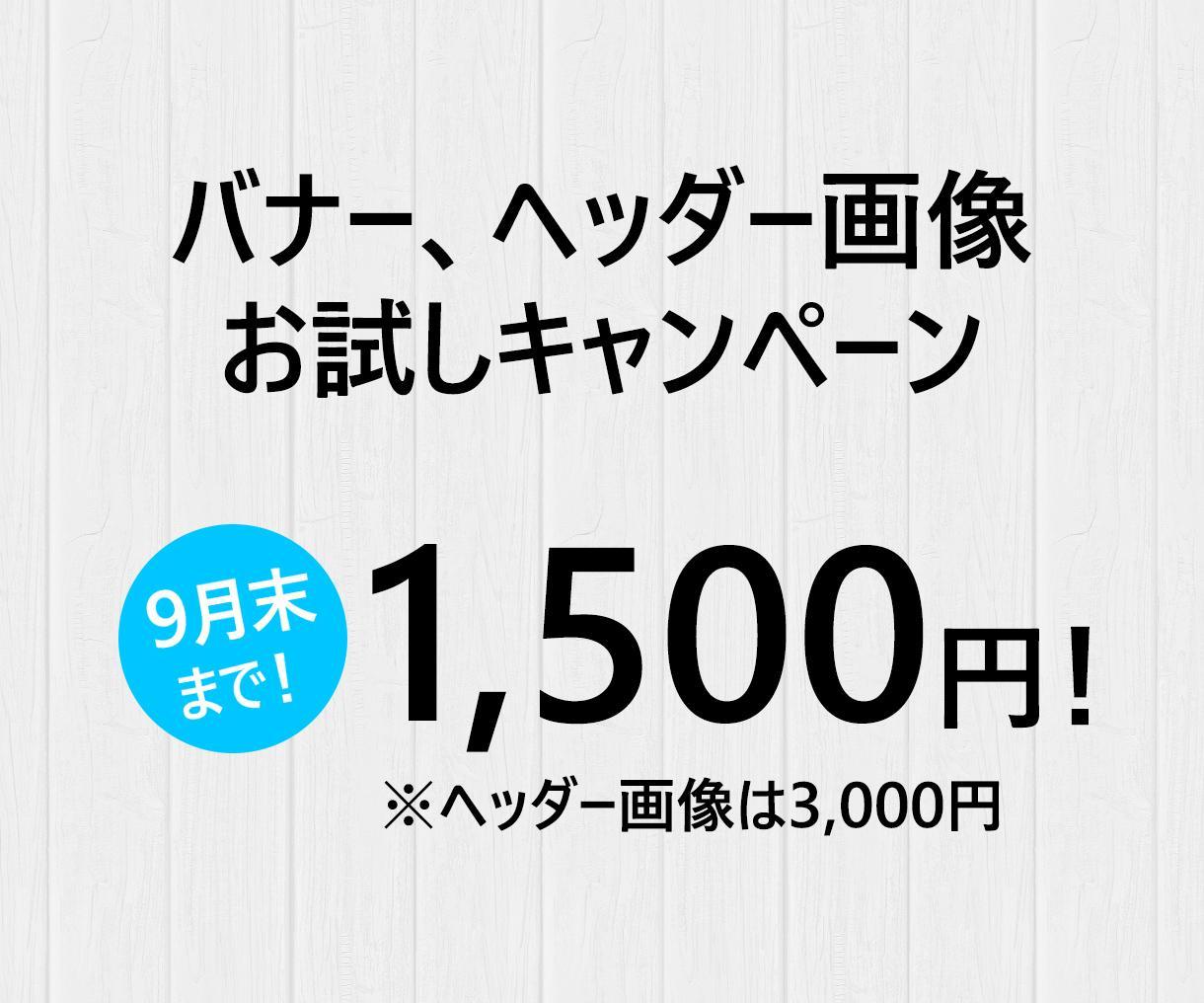 プロのデザイナーがバナー1,500円で作成します バナー、ヘッダー画像お試しキャンペーン! 1,500円~ イメージ1