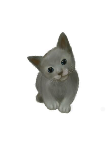 ペットのイラスト描きます 大好きなペットの写真をイラスト化します