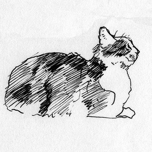 ペットの肖像画描きます(ボールペン画)