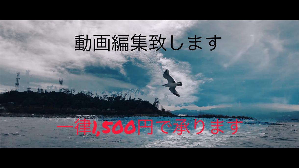 格安!【一律1,500円】動画編集・作成致します 思い出を形に残したいあなたに! イメージ1
