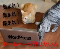 ホームページ制作致します これから開業される方・お急ぎでホームページが必要な方 イメージ1