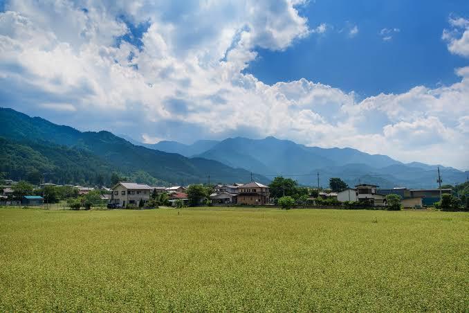 田舎の風景を写真で撮ります 田舎ならではの風景写真が欲しい方!