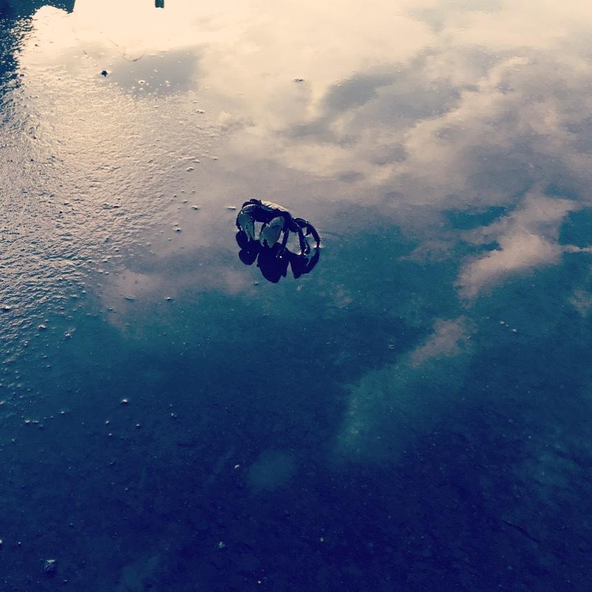 日常の中に、隠れた不思議をお贈りします 「窓の世界」シリーズ  -不思議は目の前1cm-