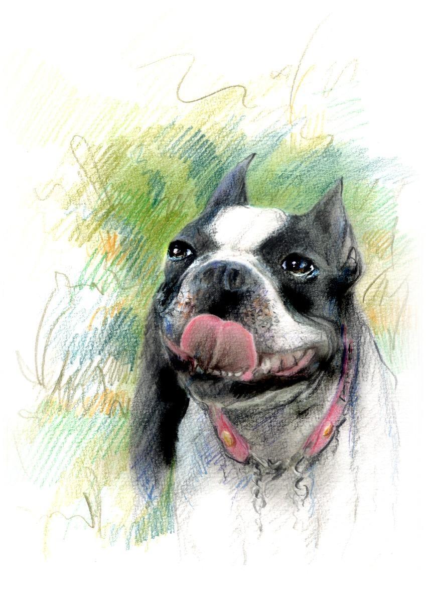 お好きな写真をリアル系イラストで描きます カルチャースクール絵画講師が描く、リアルスケッチ画