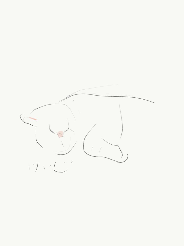 あなたの愛猫、線描で素早くスケッチします 毎日眺めるスマホのアイコンに癒しや可笑しみが欲しい方。
