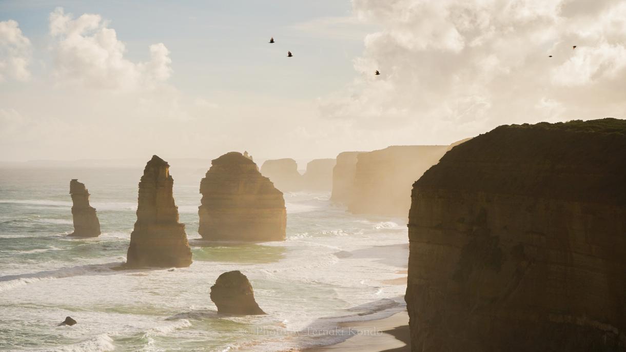 写真家Teru 出張型で撮影をします オーストラリア・ゴールドコーストで思い出を残しましょう。