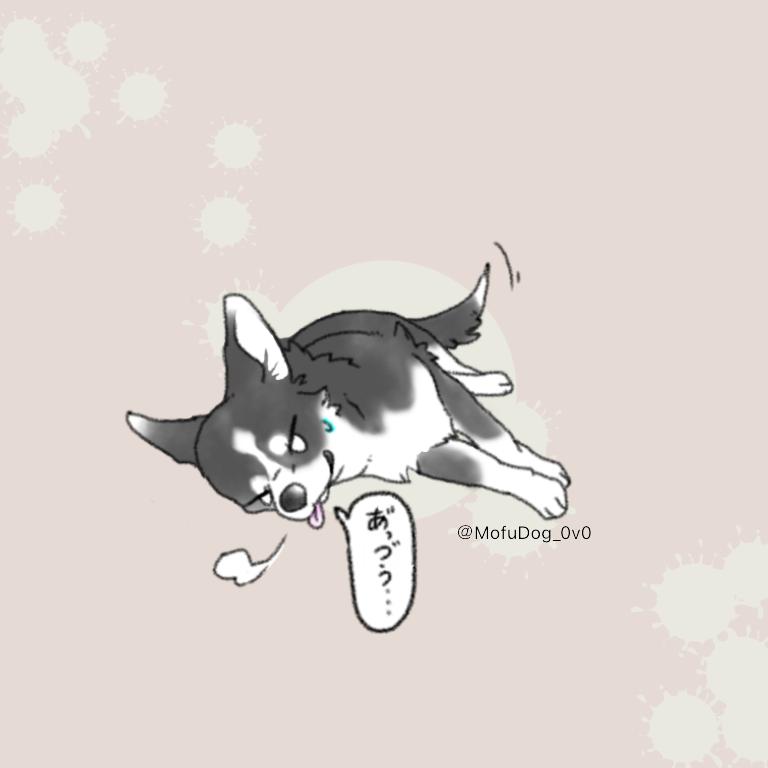 11月30日まで限定価格!!愛犬のイラスト描きます ◇シンプルながらも愛犬の特徴を強調させた描き方に