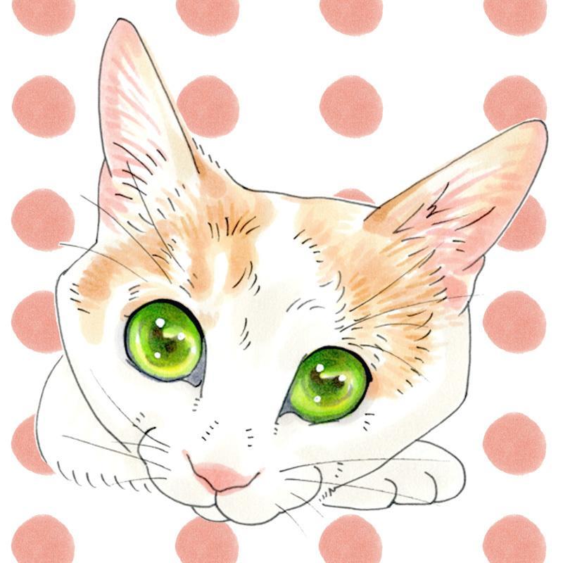 貴方のペット、可愛いイラストにします 現役ペット似顔絵師がどんなペットでもお描きします
