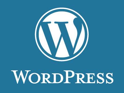 WordPessのカスタマイズ最低金額で受けます 他には無い!丁寧な対応でワードプレス難民を救いたい