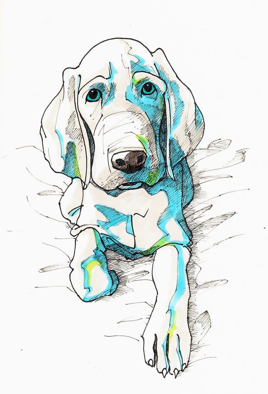 ペットや動物のイラスト手描きで描きます ★おしゃれな動物イラストおまかせください