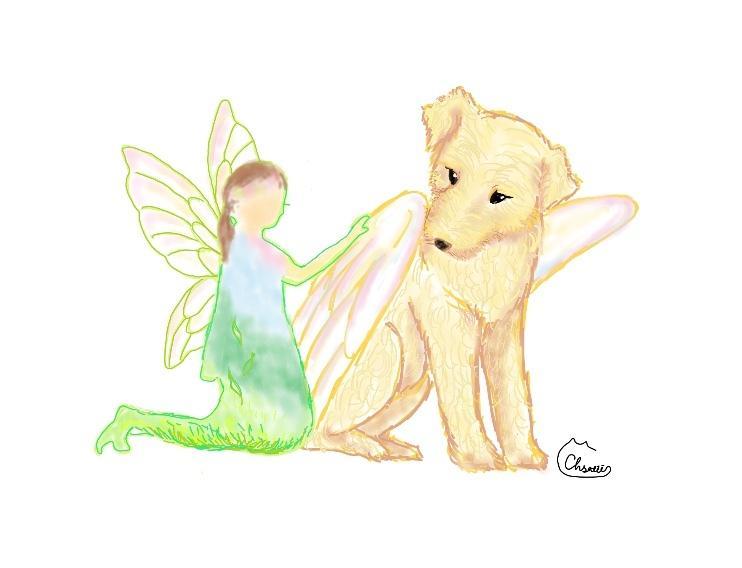 あなたのセルフイメージアニマルをお描きします あなたの心を支えていそうな動物や幻獣を表現いたします