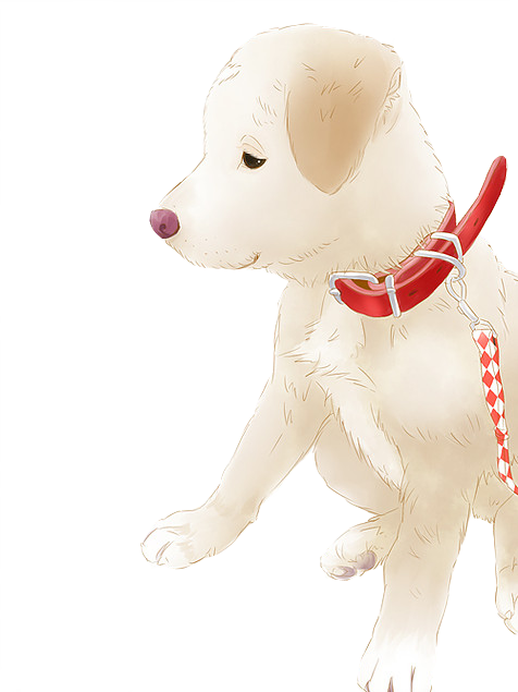 愛犬のリアルなイラスト描きます 愛犬のイラスト、思い出の1枚にいかがでしょうか?