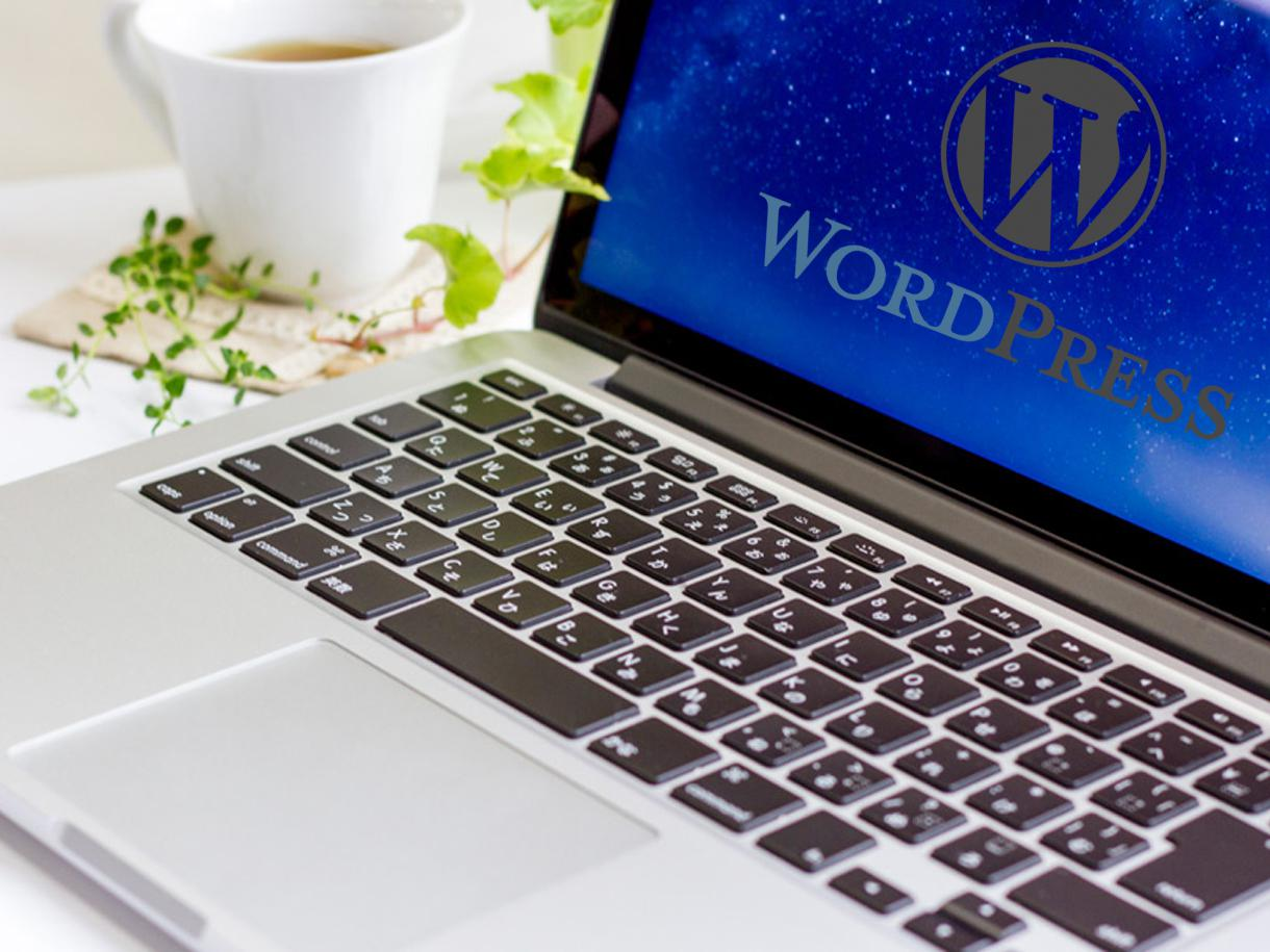 Wordpressに関するお困り事を解決します 小さなことでも、お気軽にご相談ください。