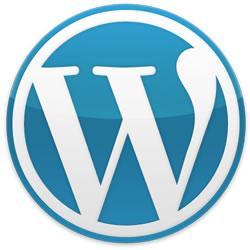 広告あり★WordPressブログを作ります 特別価格でより気軽にWordPressブログを始められます!