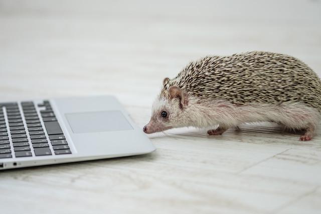プロがSEO対策のWebサイトを制作します Webサイトを初めて待つ人、今のサイトで成果が上がらない人
