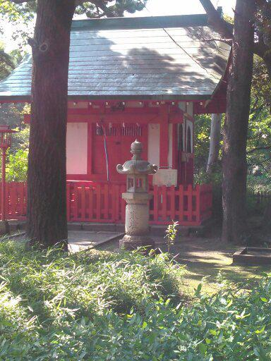 東京とその周辺のスナップ写真を撮影します スマホで撮影した普通の写真が必要な方へ
