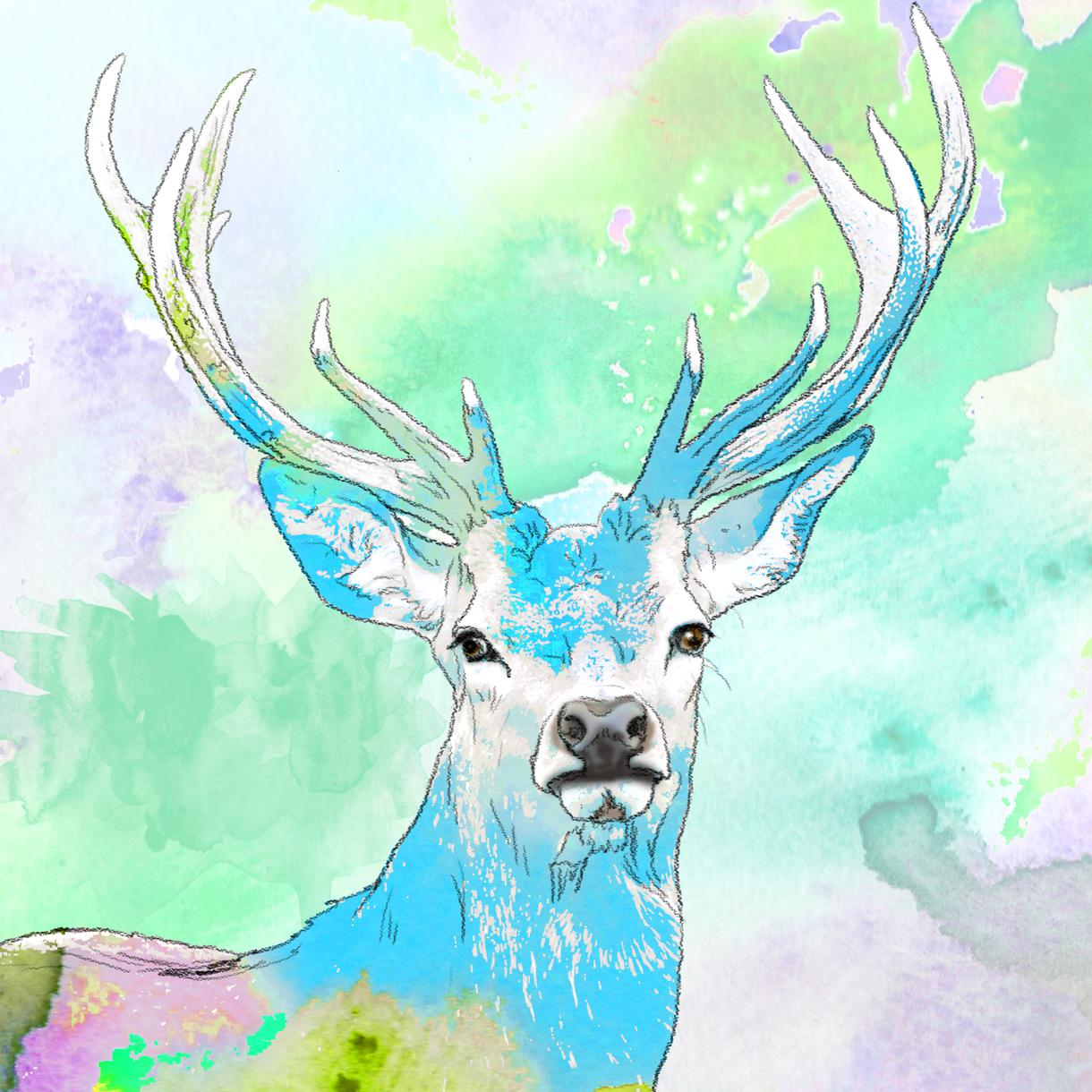 美しい水彩画風*写真からペット似顔絵*描きます 最短即日、プレゼント、各種記念、インテリアに♪