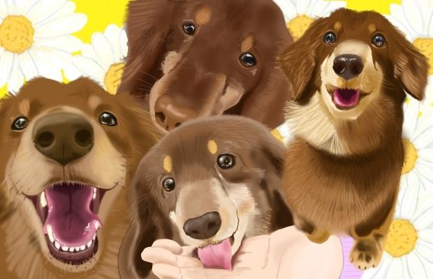 リアルな☆ペット・動物イラスト描きます あなたの大切なペットの写真をイラストにして残しませんか? イメージ1