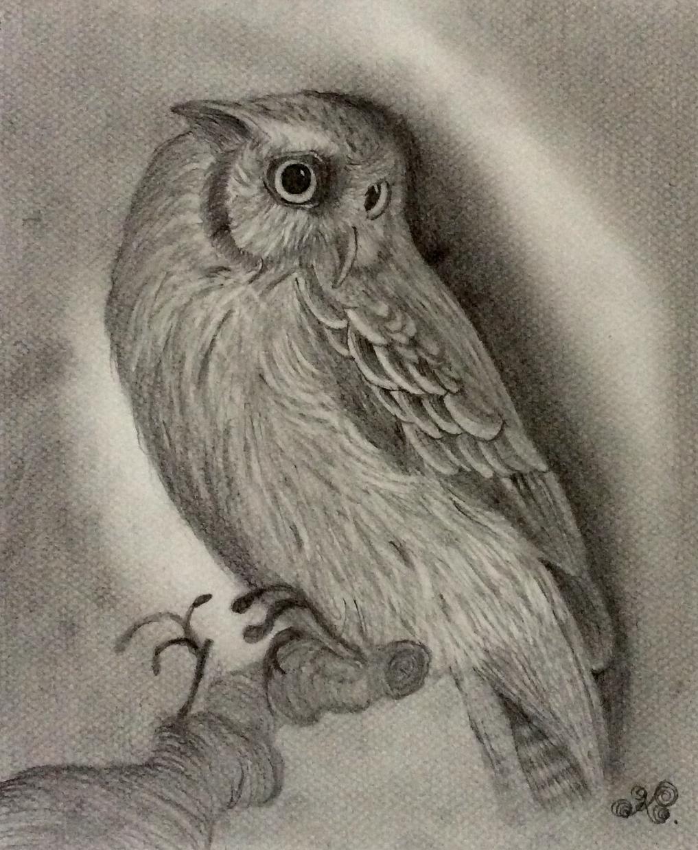 ペットの写真とヒアリングを元に絵本風の絵を描きます