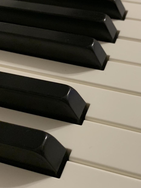 初心者向け☆あなただけのオリジナルソング作ります 趣味でオリジナル曲を歌いたい方、一緒に曲作りをしましょう!