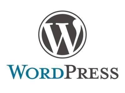 WordPress修正・カスタマイズを請け負います 既存のWordPressを見直して集客できるサイトへカスタム イメージ1