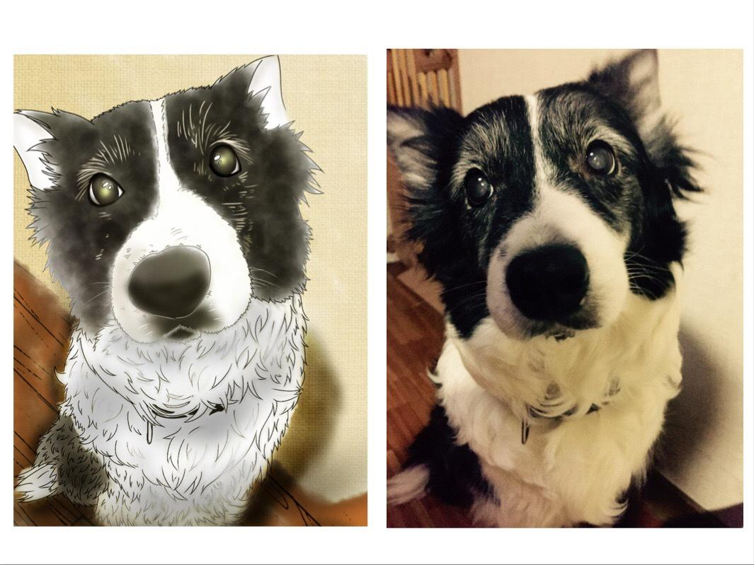 お写真を元にペットの似顔絵を描きます あなたのお気に入りの1枚がイラストに