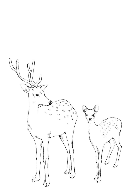 商用利用可!イラスト全般描きます 人、動物、植物など 存在感のあるイラストを制作いたします