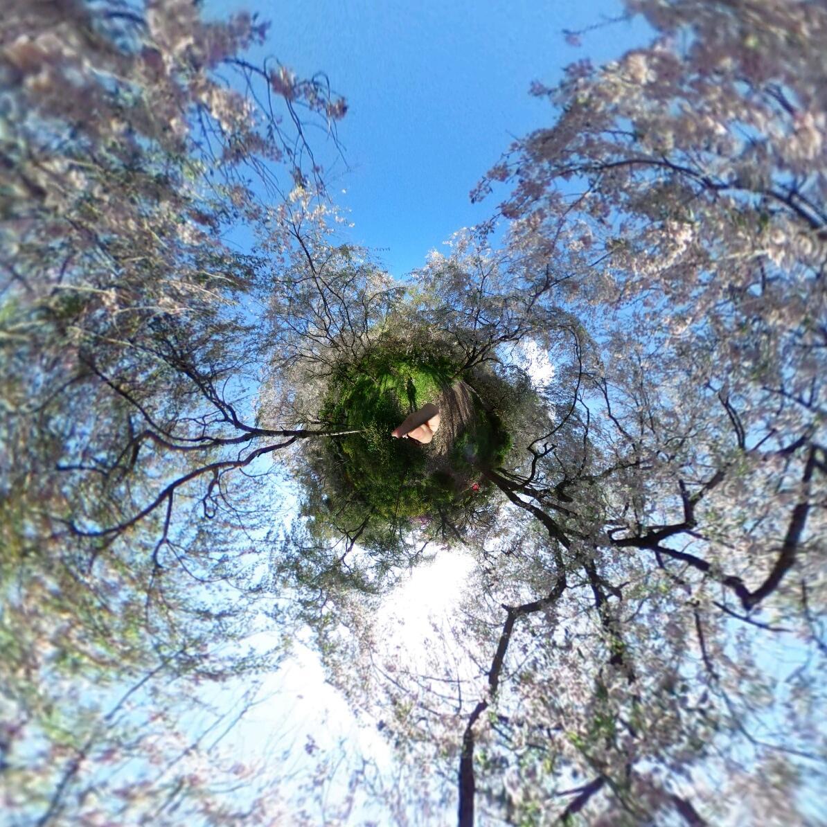 360°カメラで京都の写真を提供します♪ます 気になるスポット、観光、旅行の下見や絵の資料などにも