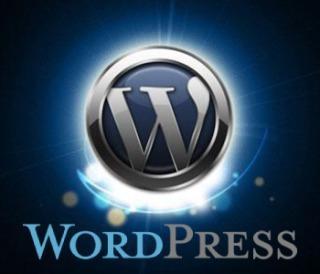 ワードプレスの立ち上げサポートします 有料ブログを運営したいけど立ち上げが難しいって方へ