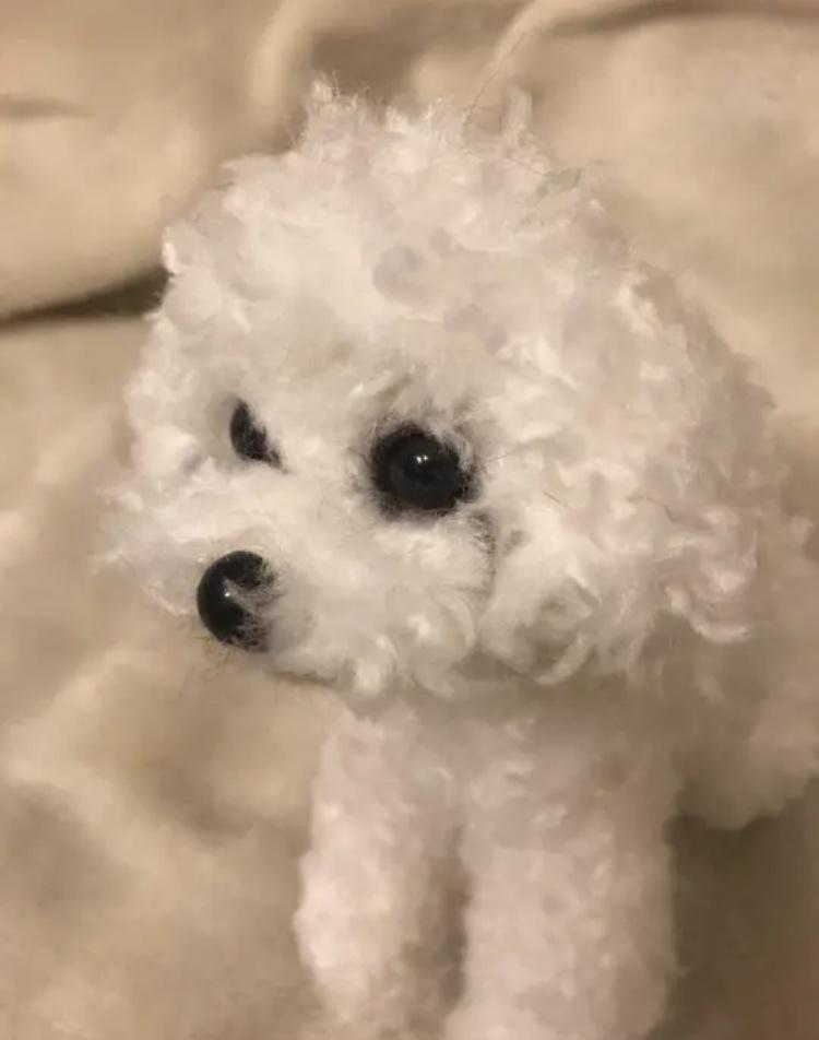 あなたのご愛犬様をそっくりにお作り致します 毛並みや色、目元まで完全再現致します♪ イメージ1