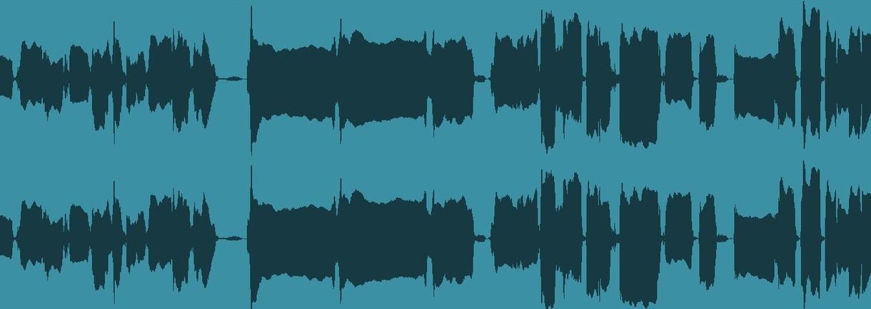 ノイズ除去承ります ノイズ除去、音量調整承ります! イメージ1