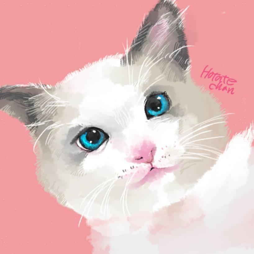 素敵な思い出を。あなたのペットのイラストを描きます オンリーワンの似顔絵をアイコンにしませんか?