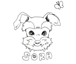 ペットの似顔絵イラストを描きます!