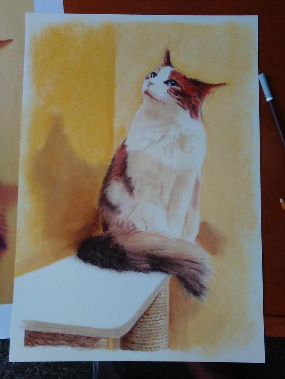 ペットの写真をリアルに描きます 温かみのある世界でたった一つのアートを!