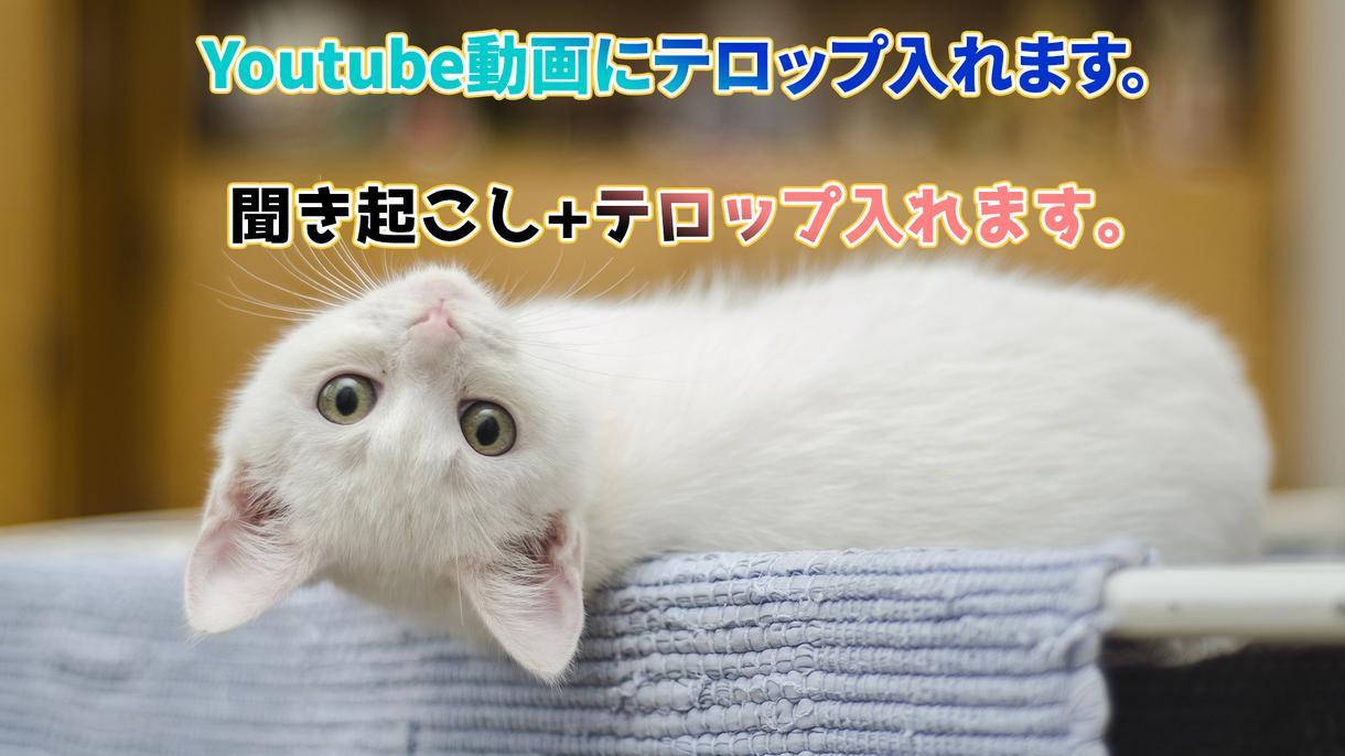 youtube動画にテロップ入れます 聞き起こし+テロップ入れ承ります。 イメージ1