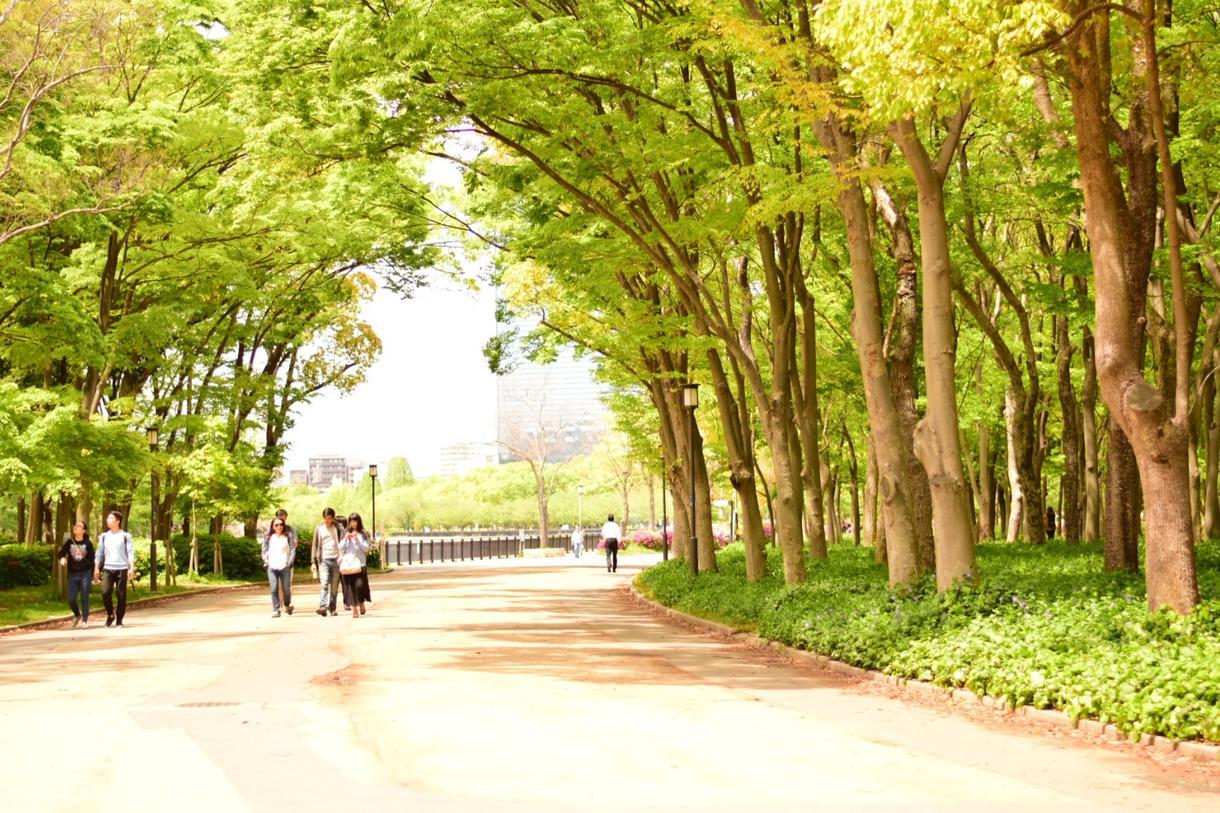 二 大坂 二 写真撮影します 【奈良】他府県もご相談ください!