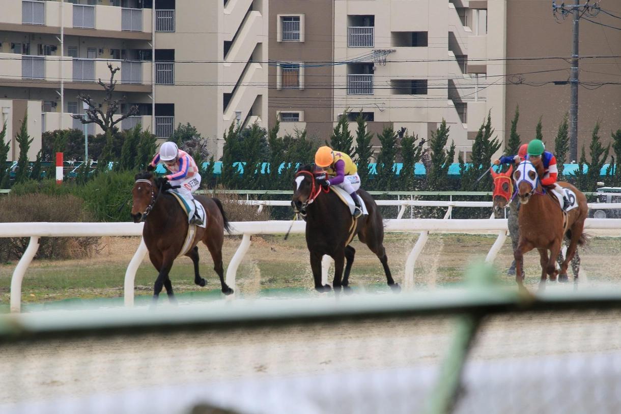 金沢競馬・究極の馬券術教えます 金沢競馬に興味のある方・驚異の回収率