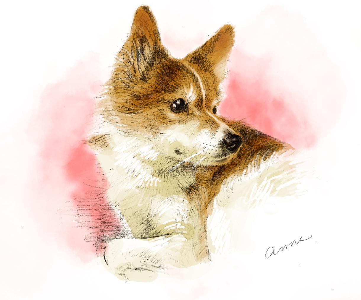 リアルタッチのペットの似顔絵描きます お写真から鉛筆とデジタル着彩であたたかい仕上がりに。 イメージ1