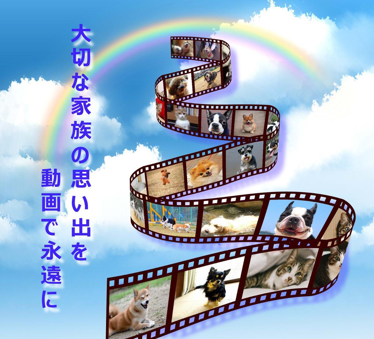 ペット写真を動画にいたします ペットと別れて寂しい方へ、思い出作りのお手伝い