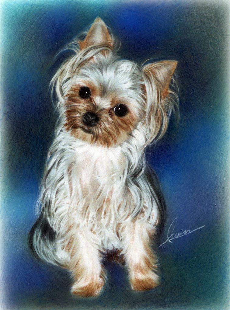 ペットの絵をリアルに温かく描かせていただきます あなたの大切なペットをずっとお傍に飾ってくださいね