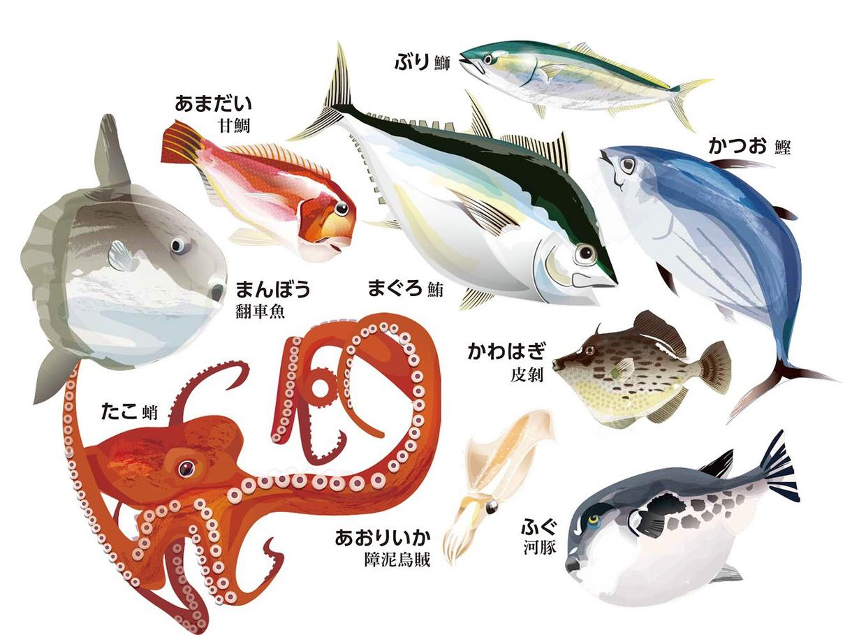 チラシやメニューのイラスト描きます 雰囲気のある新鮮な魚介や料理のイラストどうですか? イメージ1