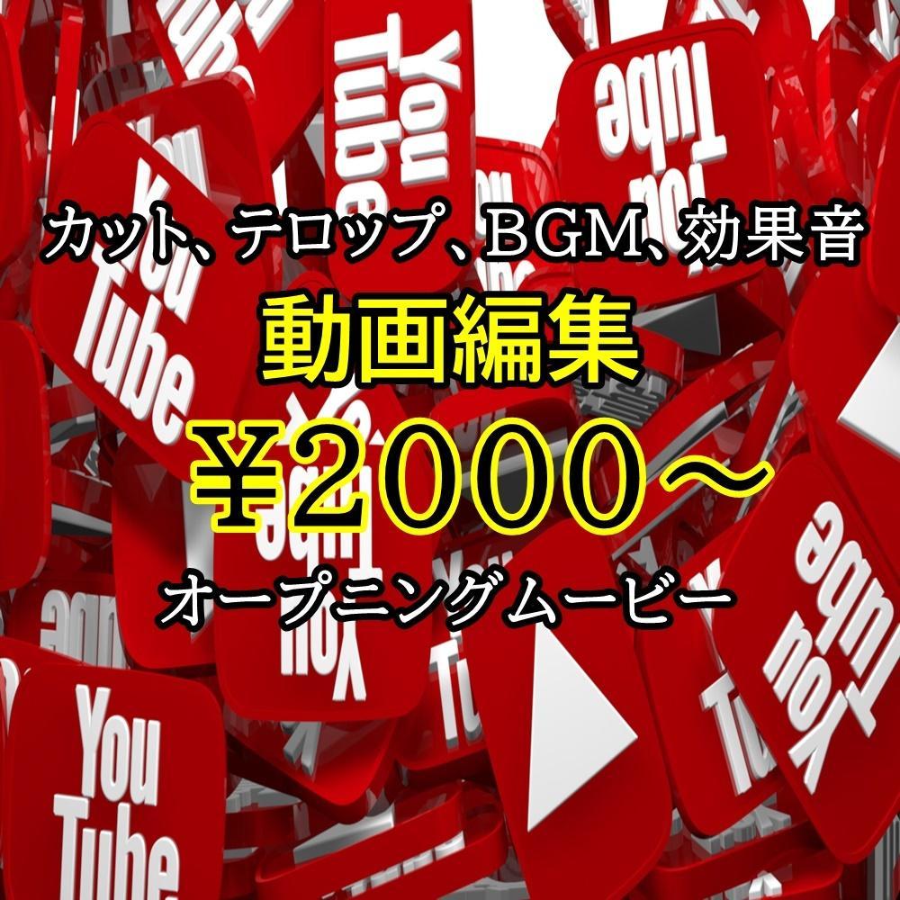ゲーム実況、ゲーム関連動画の編集代行します お得な2,000円~!実況、解説、ネタ動画編集代行致します!