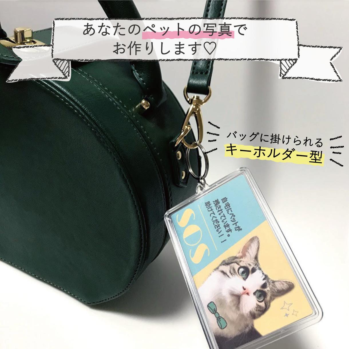 ペットの写真で! レスキューカード お作りします いざという時、大切なペットを守るために備えませんか?