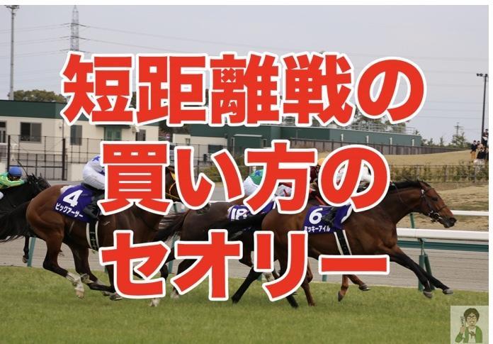 あなたの代わりにJRA競馬予想します 競馬予想は午年男に乗れ!JRA短距離戦を予想配信致します!