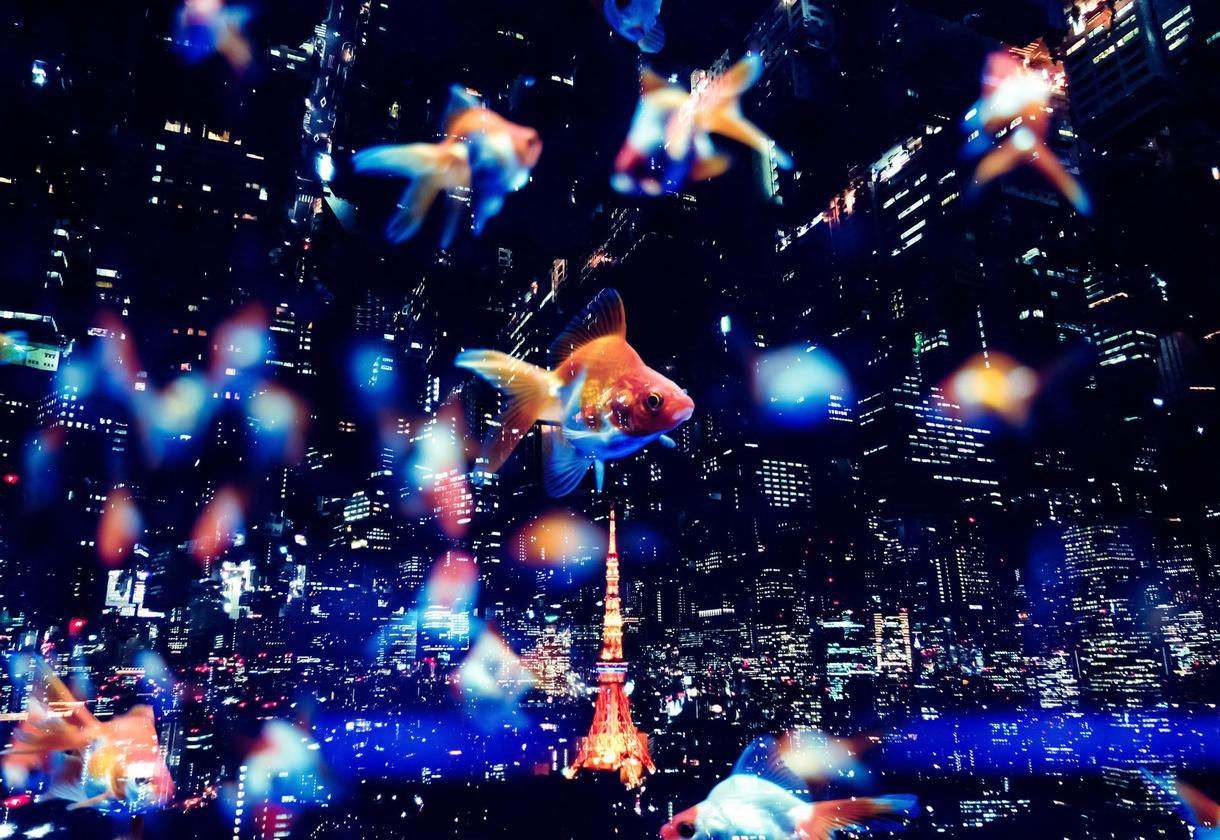 東京でのお店選び手伝います 都内での観光、遊び、グルメスポット探しの相談のります!