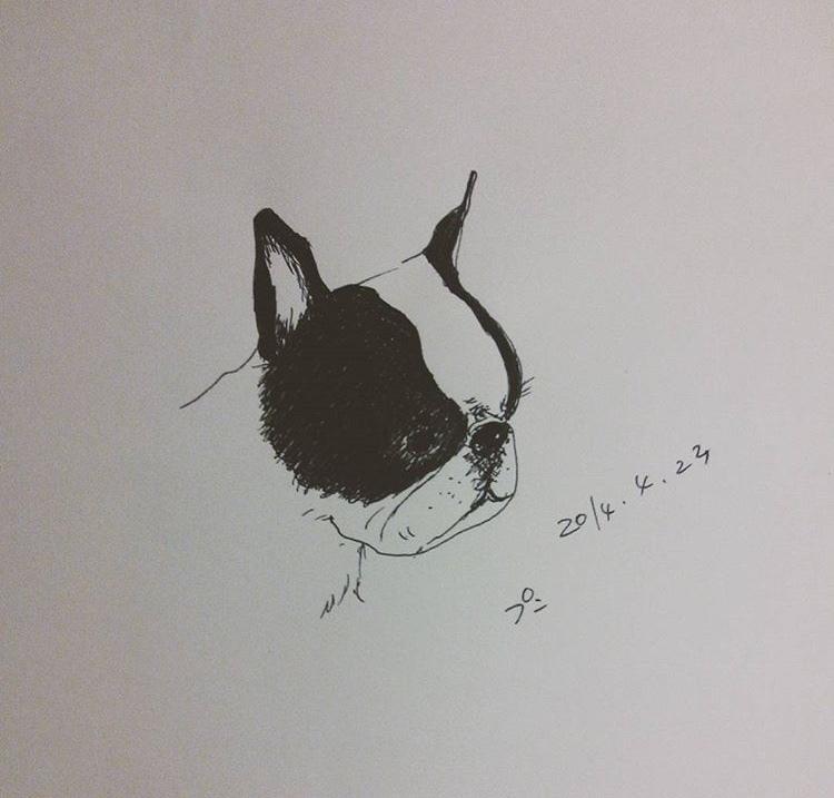 貴方の大切な家族の一員を描きます 愛犬、愛猫、愛魚、愛兎どんな動物でもお任せ下さい!
