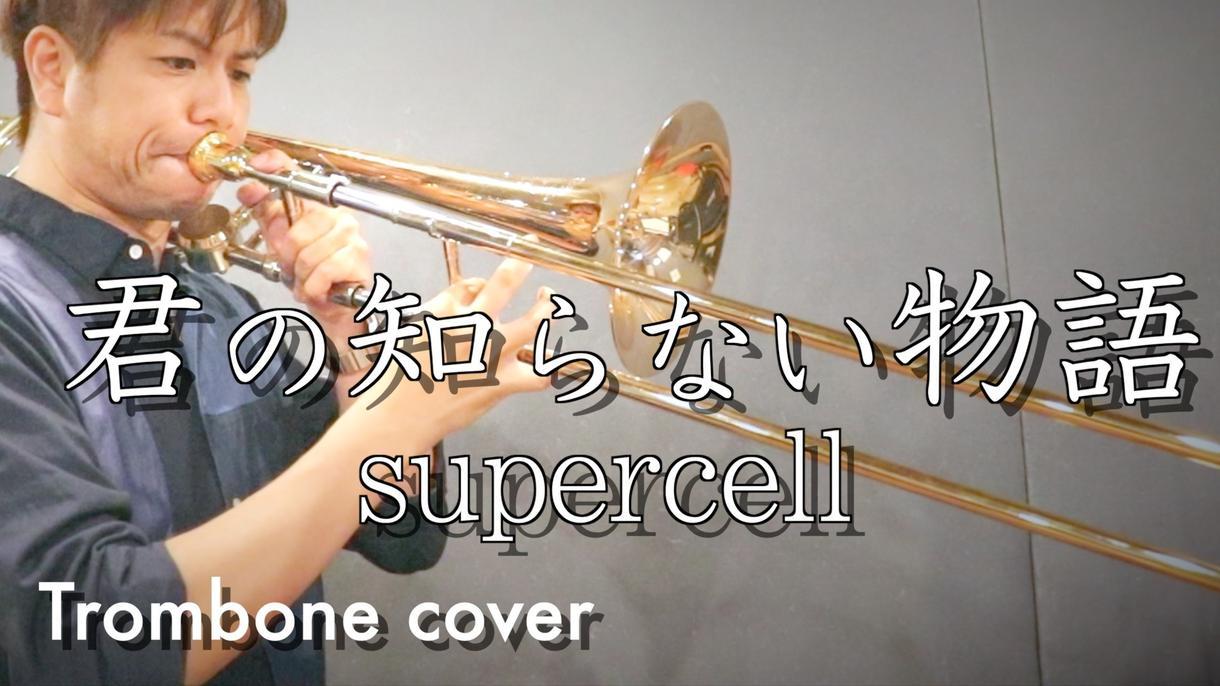 楽器演奏の映像制作をします 楽器(または歌)演奏されている動画の制作をさせて頂きます
