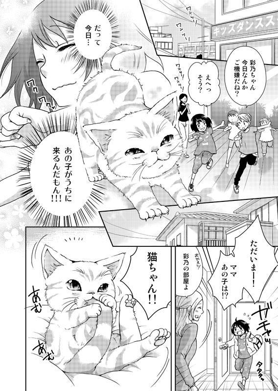 猫との思い出を漫画にします 猫との出逢いや別れ、日々の想い出を形にして残したい方へ